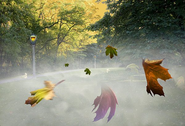 Image of Autumnal Equinox Light Painting