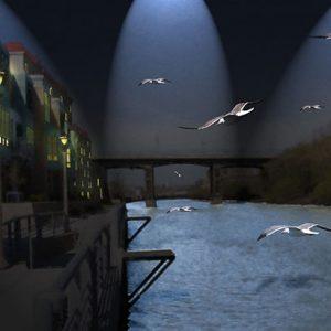 Image of Night Flight Light Painting