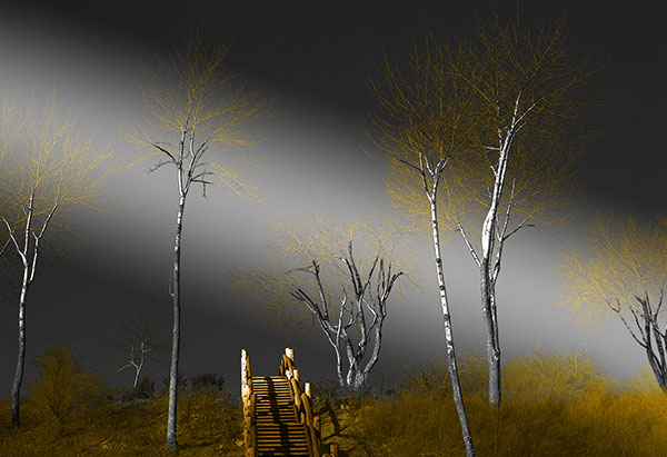 Image of Stairway to Heaven Light Painting
