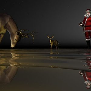 Image of Wading for Santa Light Painting